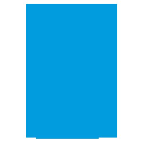 Top Original